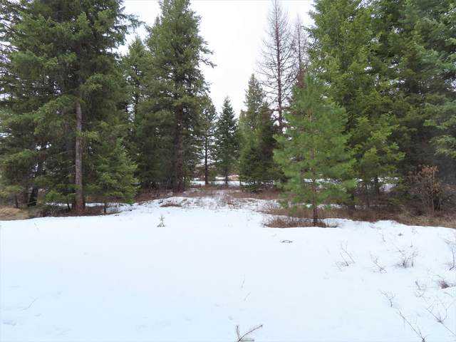 TBD Freeman Rd, CURLEW, WA 99118 (#39522) :: The Spokane Home Guy Group