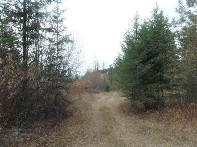 995 R Gold Hill Rd, KETTLE FALLS, WA 99141 (#39523) :: The Spokane Home Guy Group