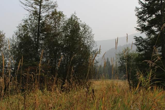 3661 Deep Lake Boundary Lot 2 Rd, COLVILLE, WA 99114 (#39560) :: The Spokane Home Guy Group