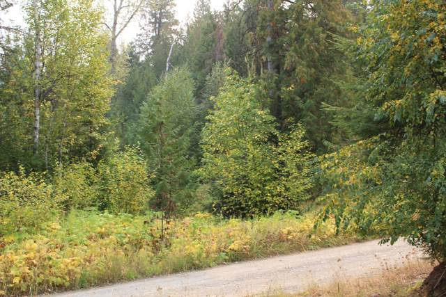 3661 Deep Lake Boundary Lot 1 Rd, COLVILLE, WA 99114 (#39561) :: The Spokane Home Guy Group