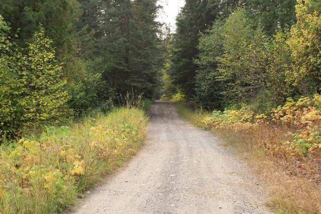 3661 Deep Lake Boundary Rd, COLVILLE, WA 99114 (#39562) :: The Spokane Home Guy Group