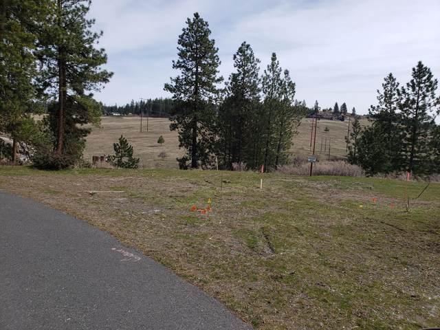 224 Shiloh Hill Way, COLVILLE, WA 99114 (#39571) :: The Spokane Home Guy Group