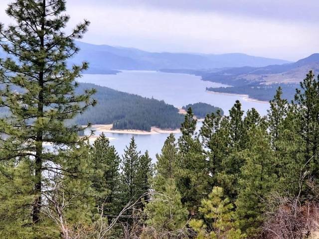 TBD Bissell Rd, HUNTERS, WA 99137 (#39614) :: The Spokane Home Guy Group