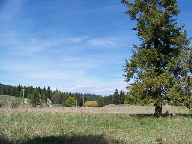 L2 Spring Valley Rd, NEWPORT, WA 99156 (#39720) :: The Spokane Home Guy Group