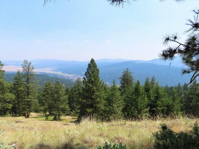 TBD Big Boulder Ln, TONASKET, WA 98855 (#40103) :: The Spokane Home Guy Group