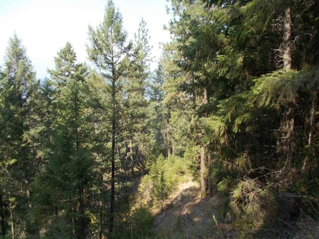 TBD Highway 25 N, EVANS, WA 99126 (#40160) :: The Spokane Home Guy Group