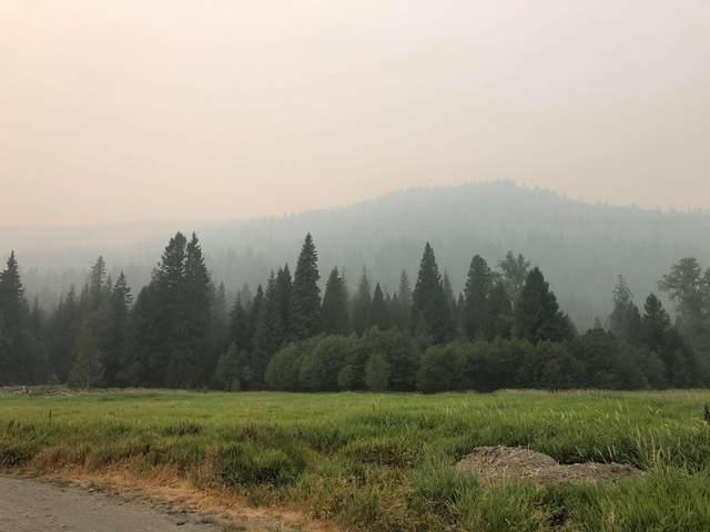 3661 Cedar Creek Rd, COLVILLE, WA 99114 (#40175) :: The Spokane Home Guy Group