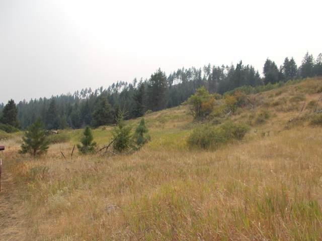 TBD Day Road, RICE, WA 99167 (#40208) :: The Spokane Home Guy Group