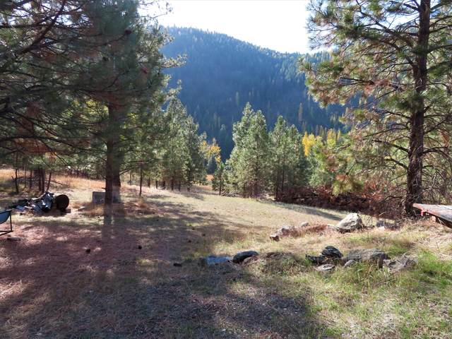 27 Rock Face Dr, CURLEW, WA 99118 (#40467) :: The Spokane Home Guy Group