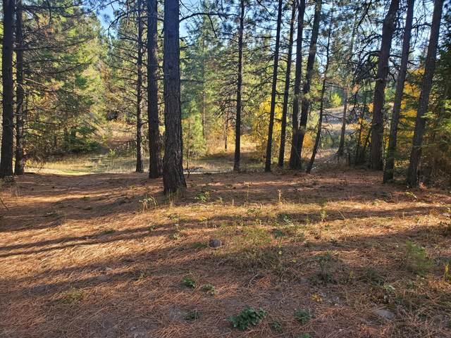 4087 Pine View Way, SPRINGDALE, WA 99173 (#40481) :: The Spokane Home Guy Group