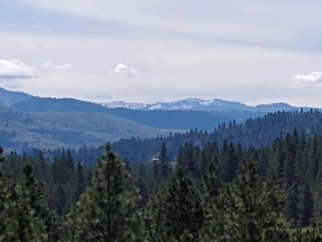 LOT D Covada, INCHELIUM, WA 99138 (#37950) :: The Spokane Home Guy Group