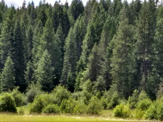 49XX Springdale Hunter Rd, SPRINGDALE, WA 99173 (#38547) :: The Spokane Home Guy Group