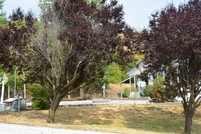 2710 Farm Market Rd, CHEWELAH, WA 99109 (#40111) :: The Spokane Home Guy Group