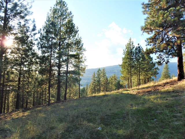 LOT 201 Old Kettle Rd, KETTLE FALLS, WA 99141 (#36197) :: The Spokane Home Guy Group