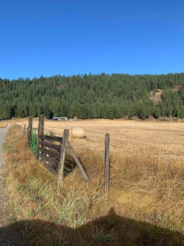 1060 Haller Creek Rd, ADDY, WA 99101 (#38901) :: The Spokane Home Guy Group