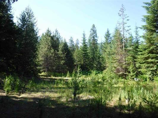 3706K Waitts Lake Rd, VALLEY, WA 99181 (#38299) :: The Spokane Home Guy Group