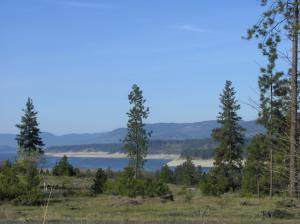LOT 49 Lookout Point Way, KETTLE FALLS, WA 99141 (#38876) :: The Spokane Home Guy Group