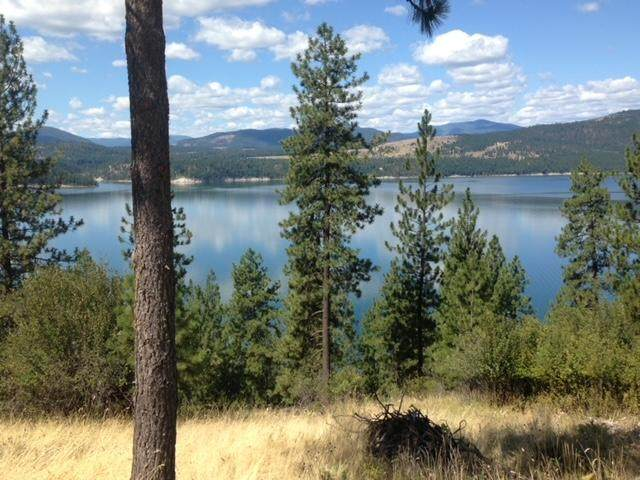 X Vista Ridge Way - Photo 1