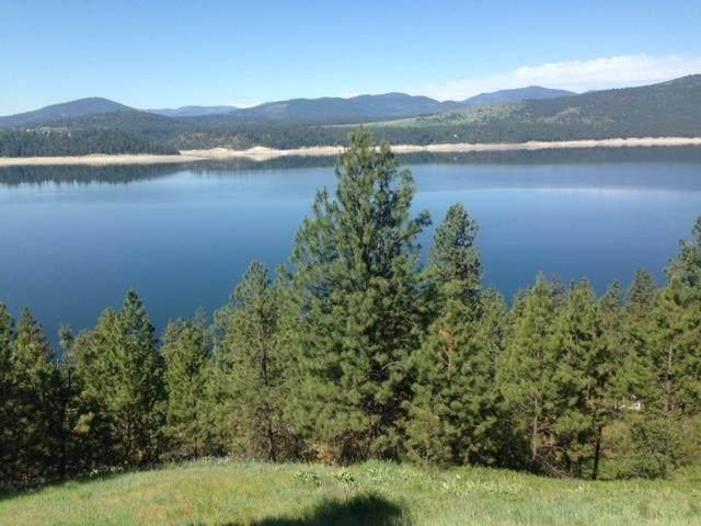 XXXXX Vista Ridge Way, GIFFORD, WA 99131 (#39467) :: The Spokane Home Guy Group
