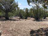 127 Cattle Track Dr. - Photo 30