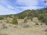 00 East Of Goat Ranch Road - Photo 10
