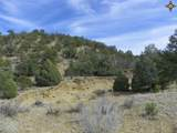 00 East Of Goat Ranch Road - Photo 11