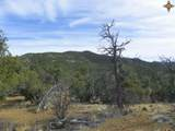 00 East Of Goat Ranch Road - Photo 2