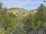 00 East Of Goat Ranch Road - Photo 3