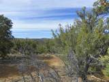 00 East Of Goat Ranch Road - Photo 4