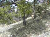 00 East Of Goat Ranch Road - Photo 8