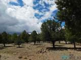 202 El Caso Road - Photo 27