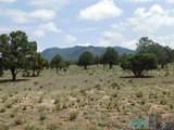 202 El Caso Road - Photo 32