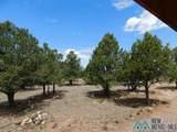 202 El Caso Road - Photo 6