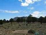202 El Caso Road - Photo 8