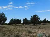 202 El Caso Road - Photo 9