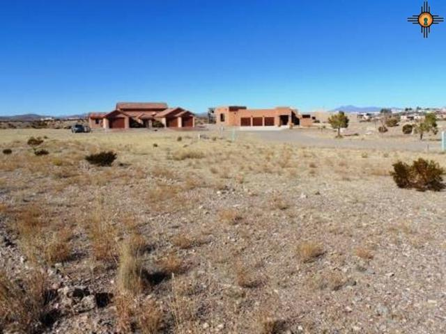 206 Ave Nido, Elephant Butte, NM 87935 (MLS #20150014) :: Rafter Cross Realty