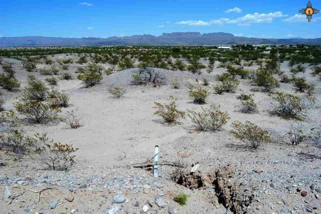 Lots 594 - 597 Lakeshore Highlands, Elephant Butte, NM 87935 (MLS #20164213) :: Rafter Cross Realty
