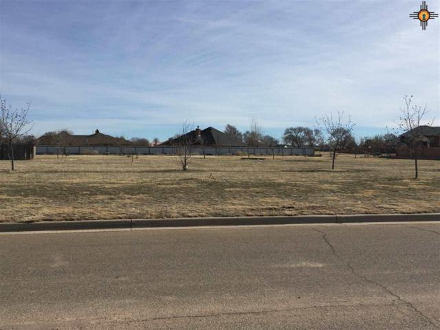 105 Colonial Estates, Clovis, NM 88101 (MLS #20170640) :: Rafter Cross Realty