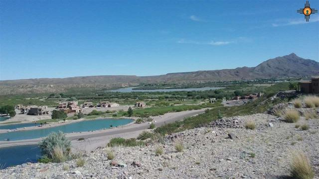 110 Canon Circle, Elephant Butte, NM 87935 (MLS #20172109) :: Rafter Cross Realty