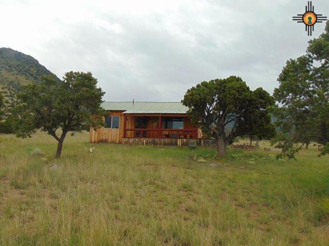 203 Northern Trail, Datil, NM 87821 (MLS #20174548) :: Rafter Cross Realty