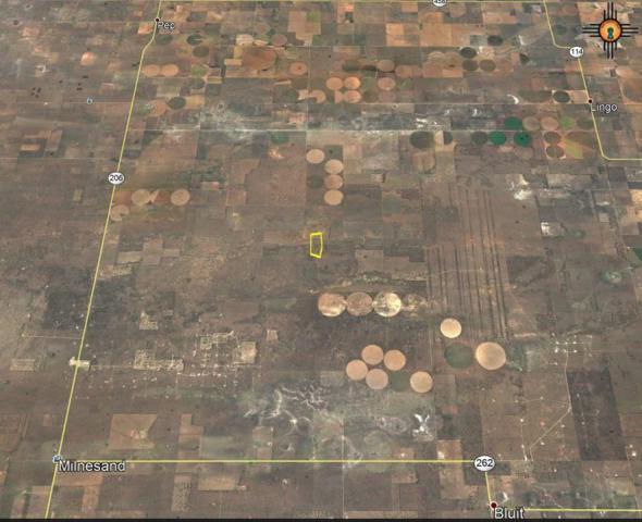 13 Acres South Of Dora, Dora, NM 88115 (MLS #20175194) :: Rafter Cross Realty