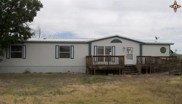 66 Clavo Rd, Caballo, NM 87931 (MLS #20175226) :: Rafter Cross Realty