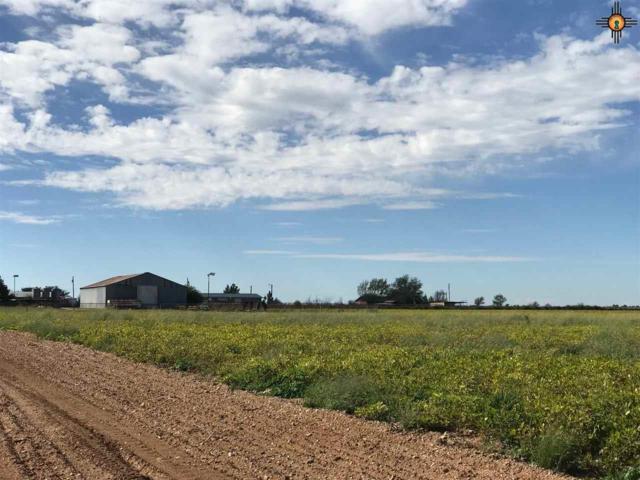 5422 N Six Shooter Rd, Lovington, NM 88260 (MLS #20175282) :: Rafter Cross Realty