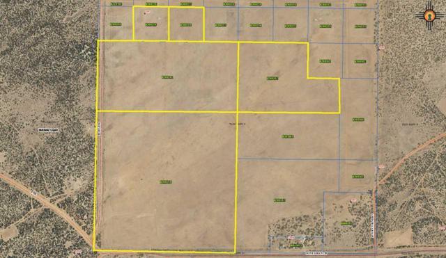 Lot 17 Jones Ranch Rd, Gallup, NM 87301 (MLS #20175500) :: Rafter Cross Realty