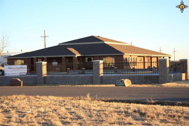 701 Arizona, Clovis, NM 88101 (MLS #20175658) :: Rafter Cross Realty