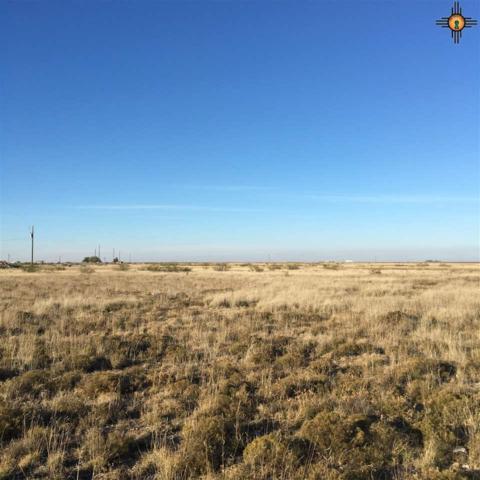 000 Artesia Hwy, Lovington, NM 88260 (MLS #20175704) :: Rafter Cross Realty