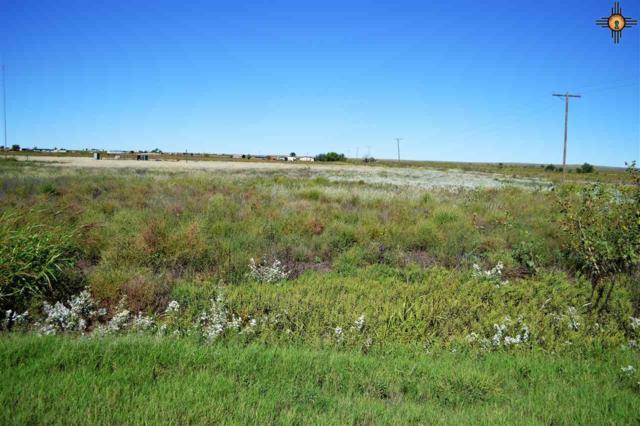 3601 Quay Road 63, Tucumcari, NM 88401 (MLS #20175945) :: Rafter Cross Realty