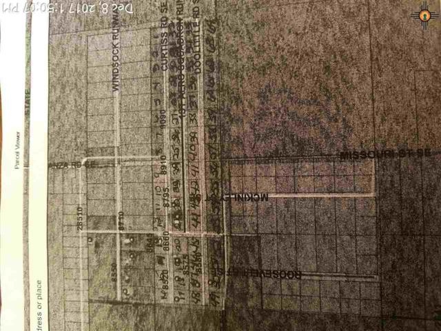 000 Windsock Se, Deming, NM 88030 (MLS #20175976) :: Rafter Cross Realty