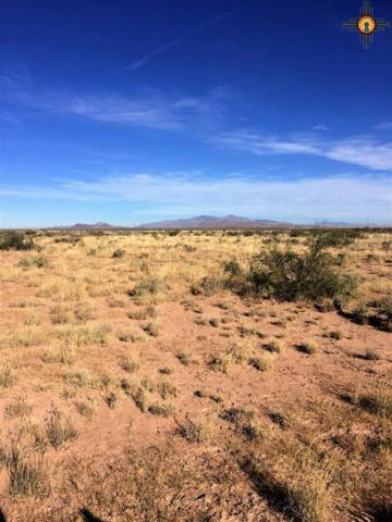 0000 Descanso & Solano, Deming, NM 88030 (MLS #20180295) :: Rafter Cross Realty