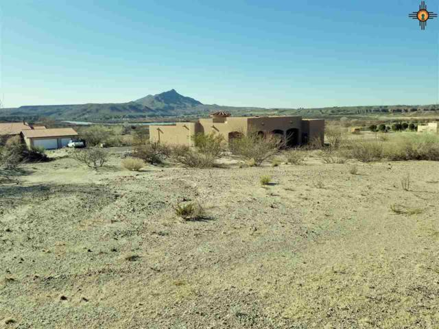 214 Stagecoach, Elephant Butte, NM 87935 (MLS #20180834) :: Rafter Cross Realty